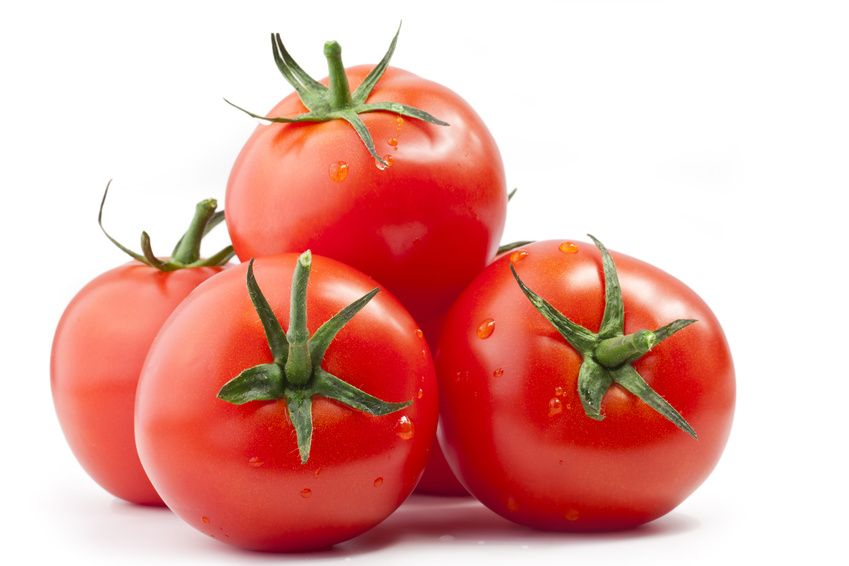 TOMATES – GREEN BUILDING GROUP